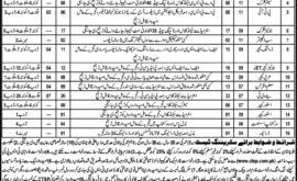 Workers Welfare Board Balochistan Jobs CTSP Test Roll No Slip