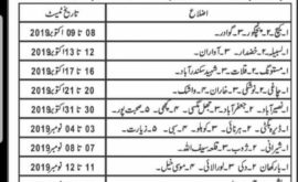 Government of Baluchistan Secondary Education Department Jobs CTSP Test Roll No Slip
