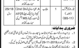 Anti Terrorism Court Bahawalpur Jobs 2019