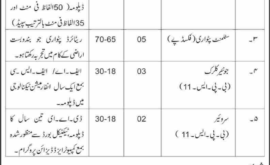 Director Land Record Department Nowshera Jobs KPK 2019 November
