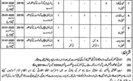 District Health Authority Mianwali jobs