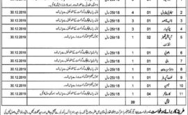 DHA District Health Authority Multan Jobs