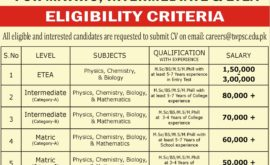 TameeriWattan Public School Colleges Jobs Written Test Result