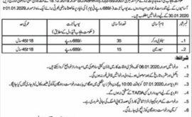Office Town Committee Sadoki Jobs