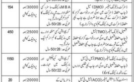 World Educational Services WES Jobs