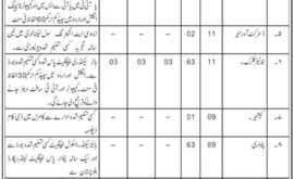 Deputy Commissioner Office Zhob Jobs