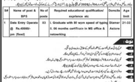 Diamer Astore Jobs