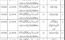 Health Department Karak Jobs