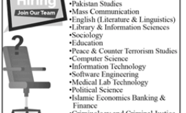 Minhaj University Lahore Jobs