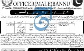 District Education Officer Bannu Jobs