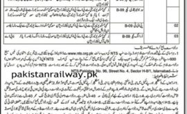 Elementary Secondary Education Department AJK Jobs