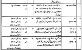 Green Pakistan Programme Jobs KPK