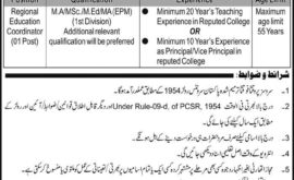 Lahore Cantonment Board LCB Jobs