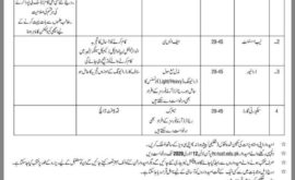 National University of Sciences and Technology NUST Jobs