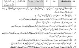 Armed Forces Inspectorate of Medical Stores AFIMS Jobs NCBMS Result