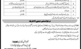 Federal Board of Revenue FBR Jobs