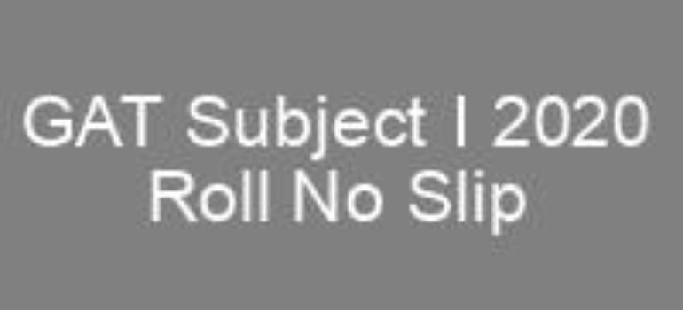 GAT Subject I 2020 NTS Roll No Slip