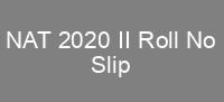 NTS NAT 2020 II Roll No Slip
