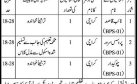 Sindh Labour Court No 4 Karachi Jobs