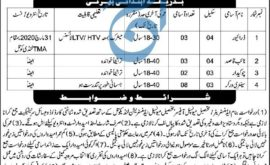 Tehsil Municipal Office Landi Kotal Jobs