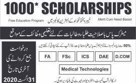 Educational Scholarship Organization ESO KPK NTPA Roll No Slip
