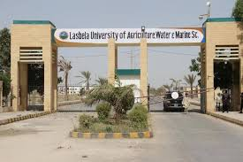 LUAWMS Admissions BS Programs BS Agriculture MS Programs NTS Result