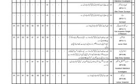 Balochistan Labour Welfare Department Jobs Via CTS