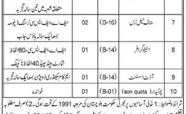 Balochistan Employees Social Security Institution BESSI Jobs