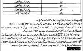 Elementary Secondary Education Chitral Jobs Via NTS