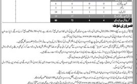 Sindh Police Hyderabad Region Junior Clerk Jobs Via PTS