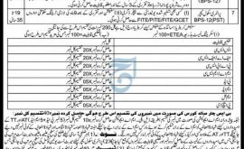 Elementary Secondary Education Kurram Jobs Via ETEA