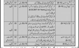Advocate General Office KPK Jobs