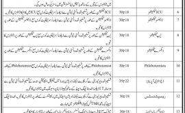 Jinnah Postgraduate Medical Centre JPMC Jobs Interview Schedule