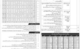 ESED Azad Kashmir Jobs NTS Answer Keys Result
