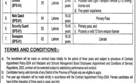 Directorate of Religious Education Lahore Punjab Jobs
