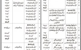 Provincial Transport Authority PTA Balochistan Quetta Jobs Test Date Result