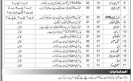 AMC School Center Record Wing Abbottabad Jobs 2021 Today Govt Jobs in Pakistan KPK Latest