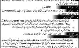 Cadet College Mohmand Agency Admissions 11 Class 2021 Merit List