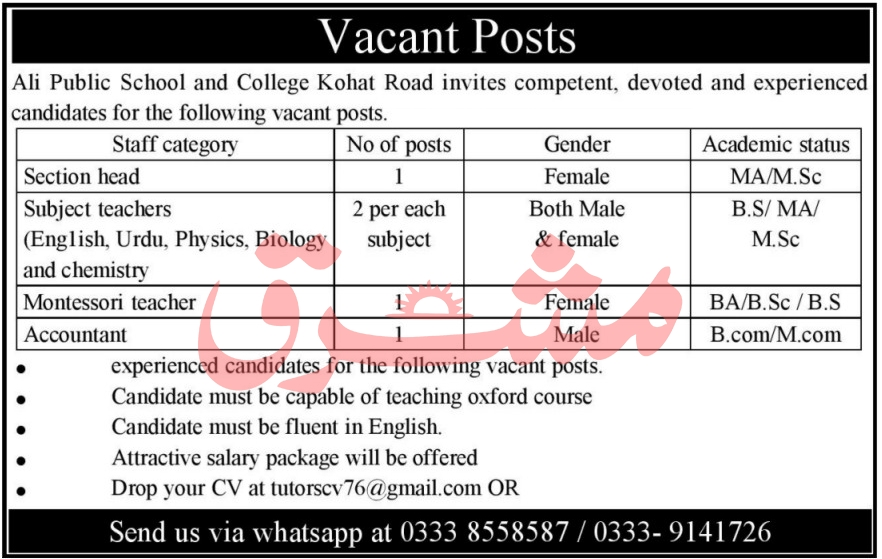 KPK Government Jobs Today Ali Public School and College Kohat
