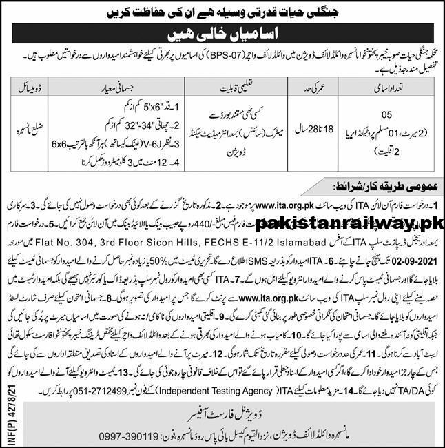 Local Government KPK Jobs 2021 Today At Forest Department Mansehra, University of Swabi & PO Box 635 Peshawar Jobs