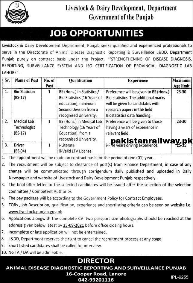 Government Driver jobs in Lahore 2021 At Livestock and Dairy Development Department